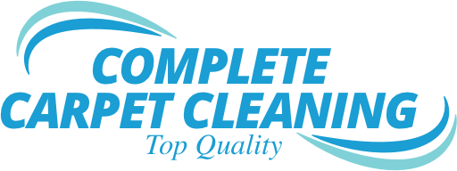 Carpet Cleaning In Columbus Upholstery Cleaning Rug